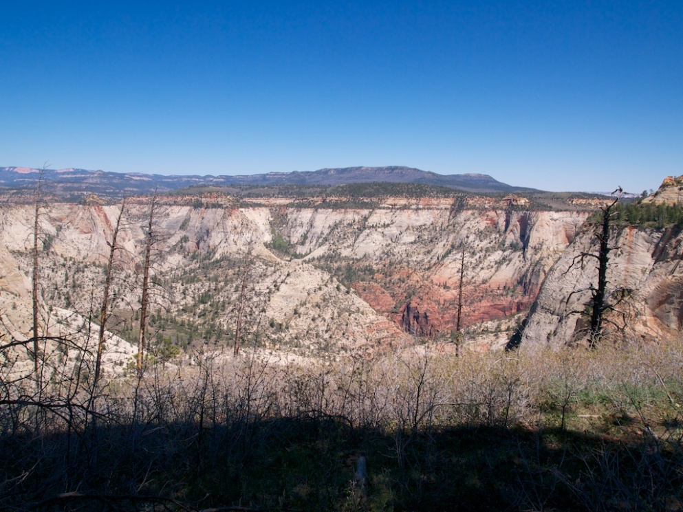 Here is one view from the West Rim