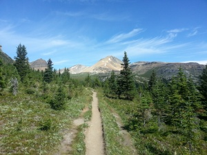 Helen Lake Trail
